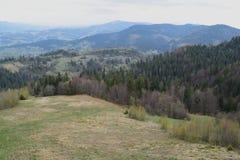 Paysage de montagne de ressort, photographie stock libre de droits