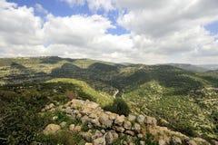 Paysage de montagne de ressort, Israël Photographie stock