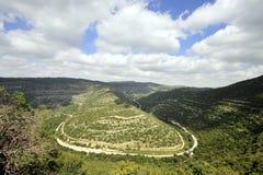 Paysage de montagne de ressort, Israël Photographie stock libre de droits