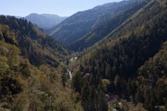 Paysage de montagne du Borjomi en Géorgie Photos libres de droits