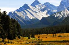 Paysage de montagne du Canada Alberta en parc national de Banff photographie stock libre de droits