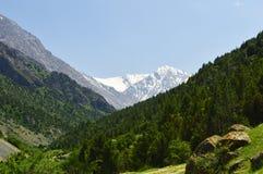 Paysage de montagne, gorge de Galuyan, Kirghizistan Photos libres de droits