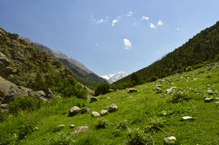 Paysage de montagne, gorge de Galuyan, Kirghizistan Image stock