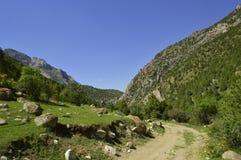 Paysage de montagne, gorge de Galuyan, Kirghizistan Photo stock