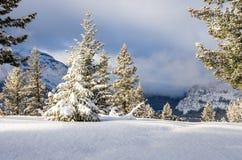 Paysage de montagne de Milou un jour nuageux d'hiver Images stock