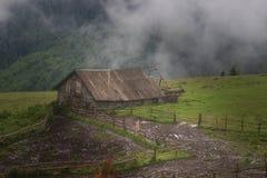 Paysage de montagne de Misty Carpathian avec la forêt de sapin, les dessus des arbres collant hors du brouillard image libre de droits