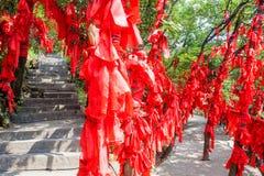 Paysage de montagne de parc national de Zhangjiajie, porcelaine photos libres de droits