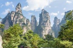 Paysage de montagne de parc national de Zhangjiajie, porcelaine image libre de droits
