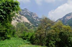 Paysage de montagne Taishan en Chine Photos libres de droits