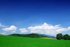 Paysage de montagne, vue des champs de roulement verts images stock