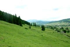 Paysage de montagnes carpathien Photo stock