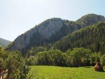 Paysage de montagnes carpathiennes en Roumanie Image stock