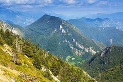 Paysage de montagnes de forêt Photographie stock libre de droits