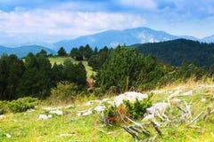 Paysage de montagnes de Pyrénées en été Photos stock