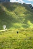 Paysage de montagnes de Pyrénées en été Huesca, Agaron Photos stock