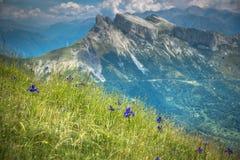 Paysage de montagnes de Pyrénées en été Huesca, Agaron Images libres de droits