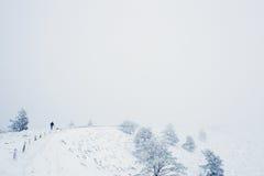 Paysage de moutain de neige pendant l'hiver Photo stock