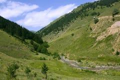 Paysage de nature Photographie stock