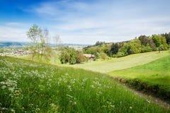 Paysage de nature de la clairière de forêt au-dessus d'un village dans St Galle Photographie stock libre de droits