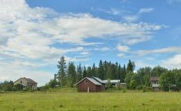 Paysage de nature de maison d'été de la Finlande Photos libres de droits