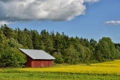 Paysage de nature de maison d'été de la Finlande Photographie stock libre de droits