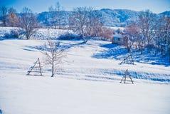 Paysage de neige Photo stock