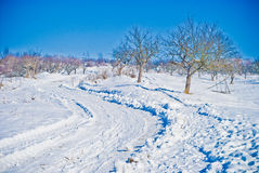 Paysage de neige Photos stock