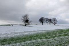 Paysage de neige d'hiver, Furfooz, Belgique Photographie stock libre de droits