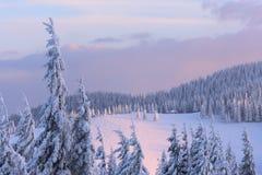 Paysage de Noël dans les montagnes d'hiver au coucher du soleil image libre de droits