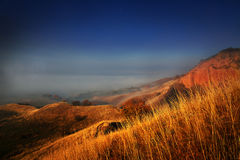 Paysage de novembre Image stock