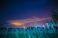 Paysage de nuit avec des herbes, des étoiles et des nuages photo stock