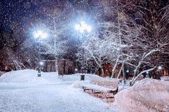 Paysage de nuit d'hiver - banc neigeux sous les arbres givrés et les lumières brillantes Vue de parc de nuit d'hiver Photos stock