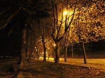 Paysage de nuit de la promenade boisée de Samil Photo libre de droits