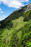 Paysage de panorama en Bavière avec des montagnes d'alpes et pré au ressort photographie stock libre de droits