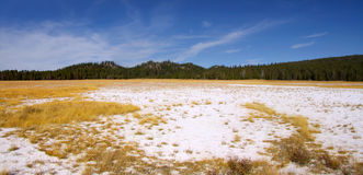 Paysage de parc national de Yellowstone Images stock