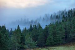 Paysage de parc naturel d'Urkiola en Espagne images libres de droits