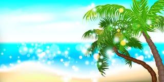 Paysage de paume de bord de la mer d'heure d'été Photo stock