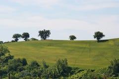Paysage de pays en Marche, Italie Image stock