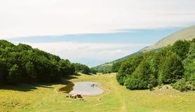 Paysage de pays en montagnes de Monte Baldo Photographie stock libre de droits