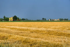 Paysage de pays près de Fiorenzuola Plaisance, Italie Image stock