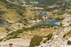 Paysage de Pirin de montagne Image stock
