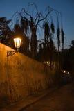 Paysage de Prague de nuit Photos libres de droits
