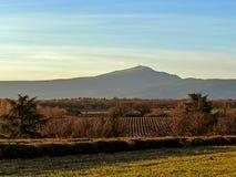 Paysage de Provancal avec Mont Ventoux et des champs de lavander au coucher du soleil dans l'hiver, Provence, France du sud, l'Eu photographie stock libre de droits