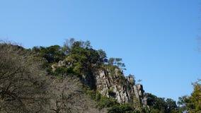 Paysage de prune et de montagne Photographie stock libre de droits