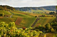 Paysage de région de vinification en Allemagne du sud Photographie stock libre de droits