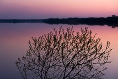 Paysage de relaxation avec un coucher du soleil rose sur un lac serein avec une surface douce de l'eau image stock