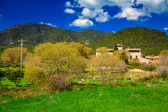 Paysage de ressort en Majorque Images libres de droits