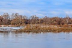 Paysage de ressort, hautes eaux sur la rivière Image libre de droits