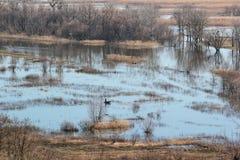 Paysage de ressort - inondez en River Valley du Siverskyi Seversky Donets avec le batelier seul dans l'eau photographie stock libre de droits