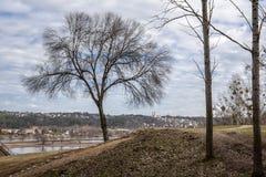 Paysage de ressort par la rivière avec les arbres et l'église images libres de droits